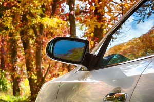 Autumn leaves from wing mirror on car