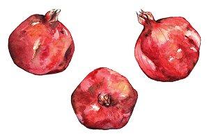 Watercolor pomegranate fruit art