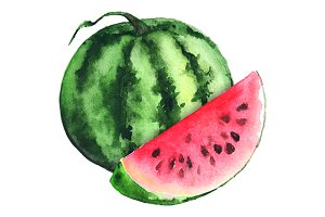 Watercolor ripe watermellon vector