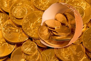 Nest egg with fine gold coins