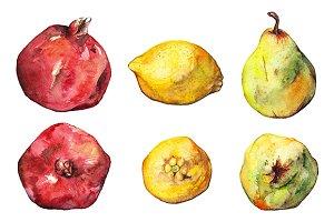 Watercolor pomegranate lemon pear