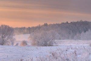 Bright winter panoramic