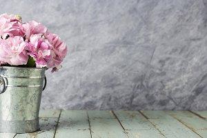 Pink carnation flowers in bucket