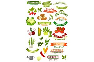 Vegetables vector isolated icons vegan ribbons set