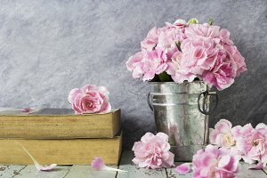 Pink carnation flowers and old book