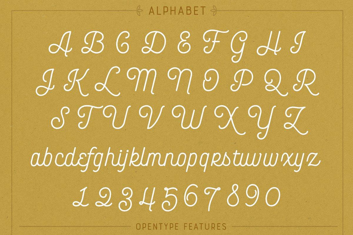 Bourton Basic Pack • 22 Fonts