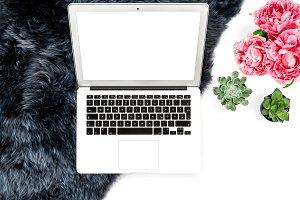 Workplace Laptop, succulent flowers