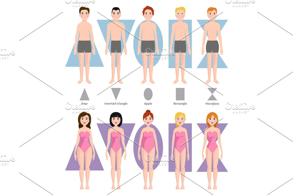ed6a76d3ceac0 Vector illustration of different body shape types. ~ Illustrations ...