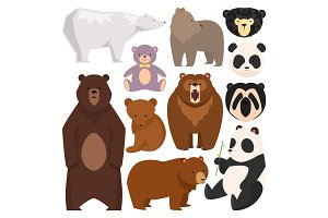 Different style bears vector illustration.
