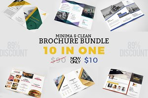 10 Business Trifold Brochure Bundle