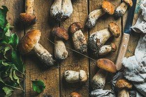Fresh white forest mushrooms