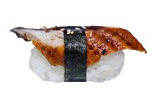 Fresh eel nigiri sushi isolated