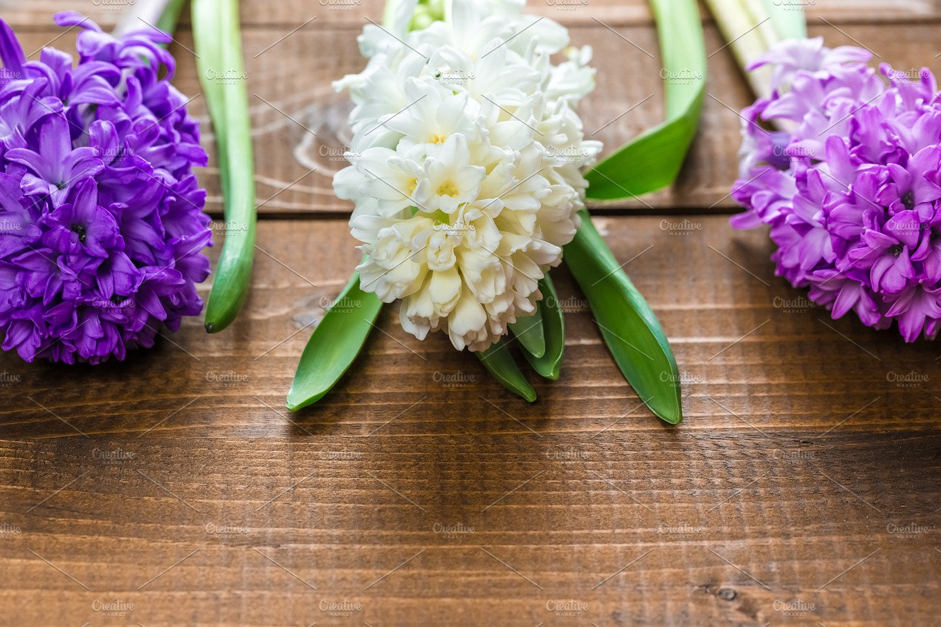 Fresh hyacinth flowers on wooden background beautiful idea for fresh hyacinth flowers on wooden background beautiful idea for greeting cards for valentines day march 8 and mothers day free space holiday photos izmirmasajfo