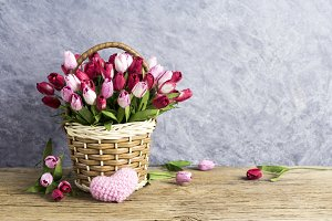Tulip in basket with pink heart