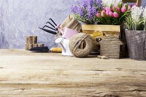 Home and garden concept