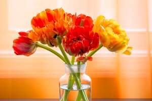 Beautiful tulips flowers bouquet
