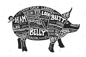 Labeled Cuts of Meat - Pig