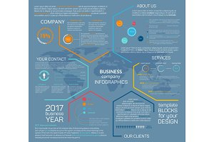 Business company vector infographics chart diagram