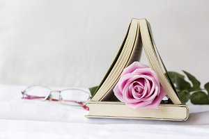Pink rose flower and book