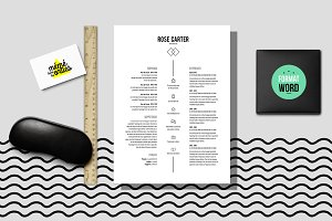 Carter - Resume template Word