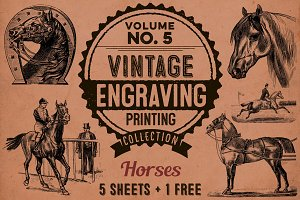 HORSES + BONUS