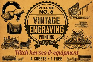 HITCH HORSES AND EQUIPMENT + BONUS