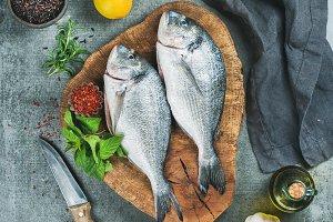 Uncooked sea bream fish