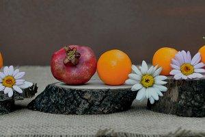 walnuts, oranges, wooden slides