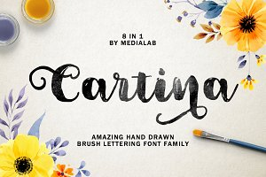 Cartina 8 in 1 script