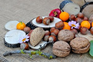Nuts,daisies, hazelnuts and oranges