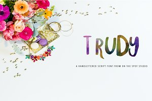 Trudy Hand Brushed Font