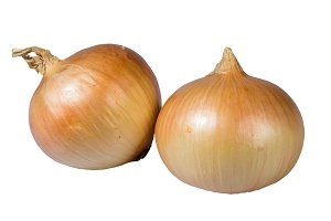 Spanish onions isolated