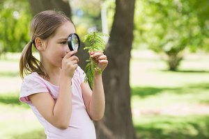 Girl examining leaves with magnifying glass at park