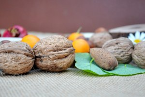 nuts and hazelnuts and oranges