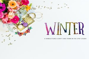 Winter - A Quirky All Caps Font