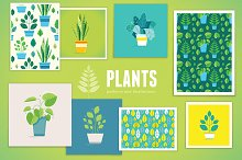 Plants - patterns and illustrations