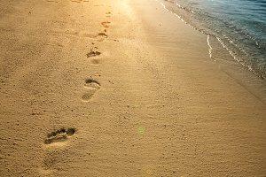 Footprints on sand along sea shore