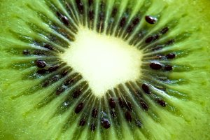 Macro kiwi fruit close up
