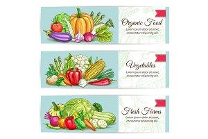 Organic vegetables food vector banner set