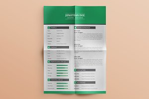 50% Off Flat Resume (3 Pages)
