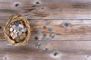 Nest Egg filled with Money
