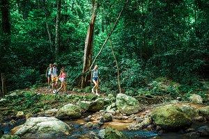 Hiking through jungle in Thailand