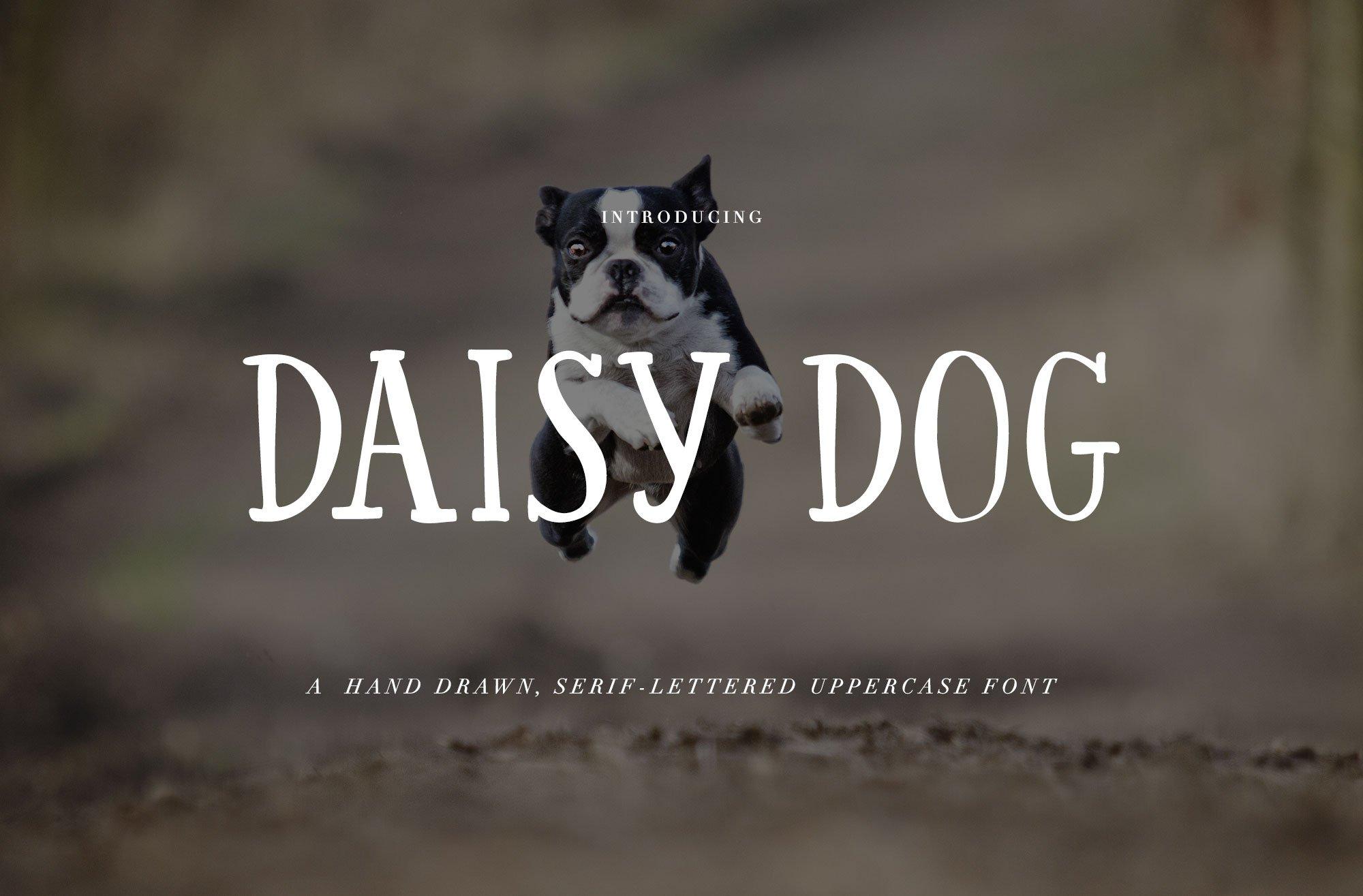 Hand Written Font Daisy Dog Serif Fonts Creative Market Wet Folding Little Terrier Paper Unlimited