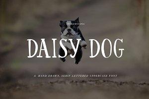 Hand Written Font: Daisy Dog