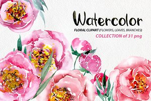 Watercolor flowers peonies png