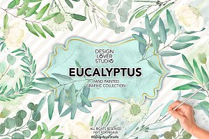 50%Sale Watercolor Eucalyptus leaves