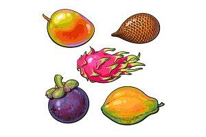 Whole unpeeled, uncut mango, papaya, mangosteen, salak, pitaya tropical fruit