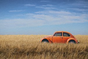 Orange VW Beetle