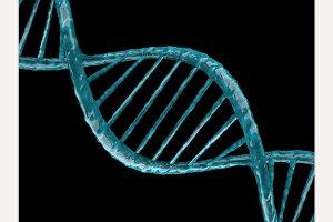 Illustration of a DNA model.