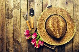 Summer, spring, vacation concept.